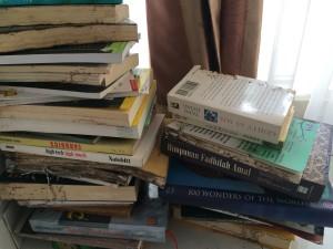 buku-dimakan-rayap